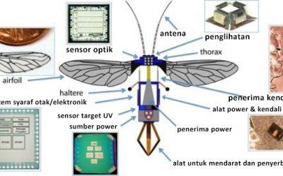Apakah Itu Serangga Atau Robot Mata-Mata?
